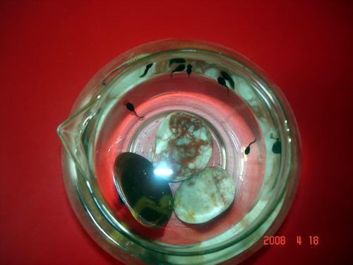 可爱的小蝌蚪(燕都园) - 未来强者婴幼儿智力开发园