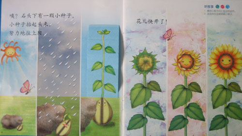 关于成熟的小故事_老师给我们讲了《小种子长大了》的故事.