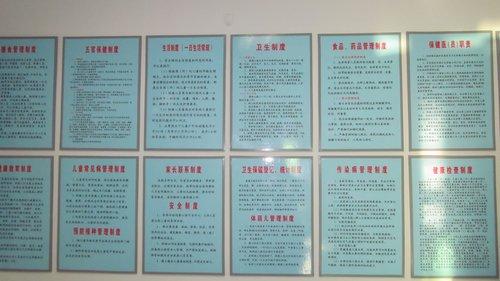 文字资料有:幼儿园的各种卫生保健制度,要求上墙并打印成册;各类人员