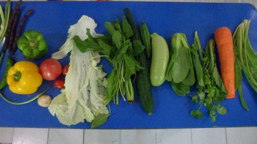 蔬菜王国的国王告诉老师说他们蔬菜王国给咱们小朋友寄来了许多东西