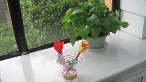 盆景 盆栽 植物 500_281图片