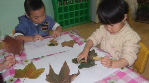 手工制作的树叶拼贴画,可以发展小孩子创造思维.