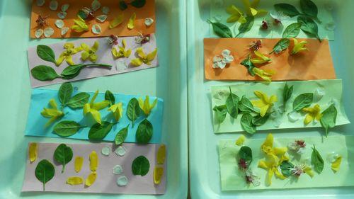 制作鲜花书签 金城园 - 未来强者婴幼儿智力开发园
