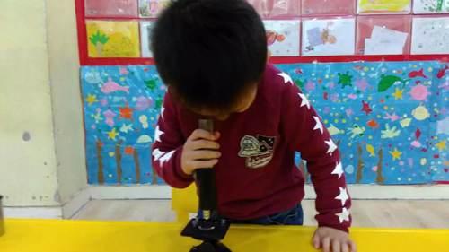 让幼儿通过显微镜去观察水中的微生物,并进行绘画.