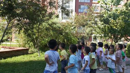 树叶书签(紫庭园) - 未来强者婴幼儿智力开发园