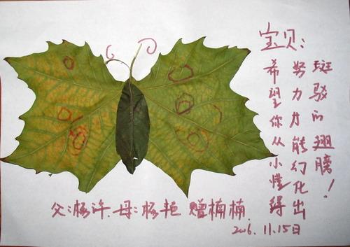 未来强者金南园飞一班小朋友们用树叶做的拼贴画感谢秋天!