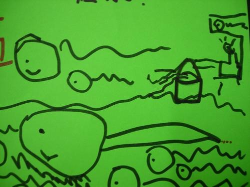 青蛙生长结构示意图