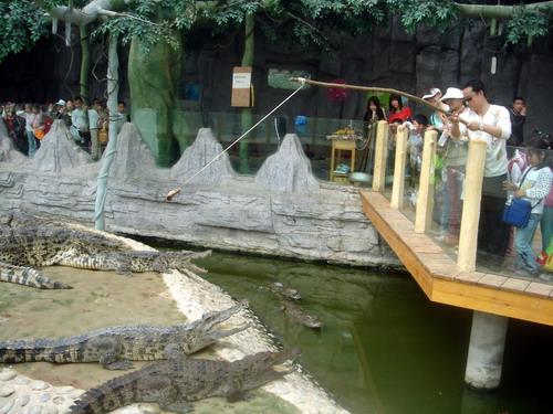 动物园一日游(燕都园)
