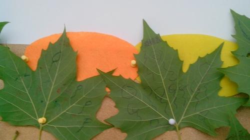 在树叶上画画的孩子